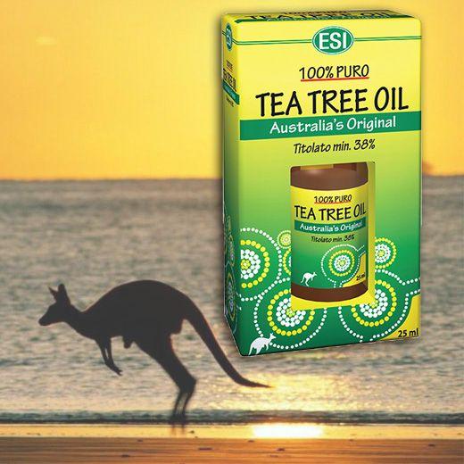 Image of 100%-os gyógyszerkönyvi tisztaságú Ausztrál TEAFA olaj
